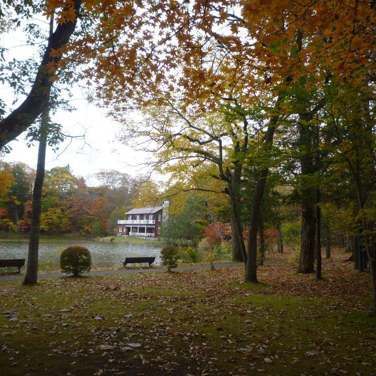 木の葉隠れハロウィン島