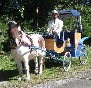 ポニー馬車、運行開始