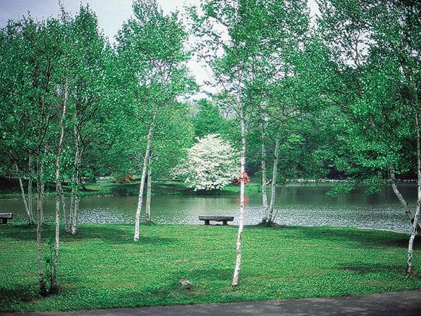 塩沢湖周辺