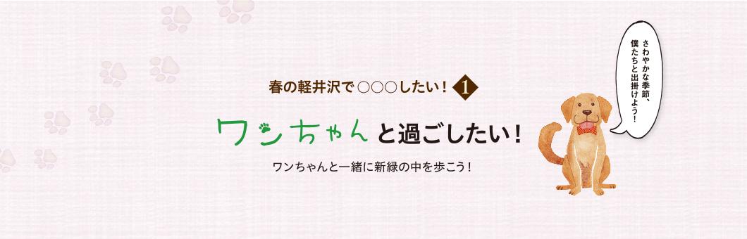 春の軽井沢で○○したい1 ワンちゃんと過ごしたい!