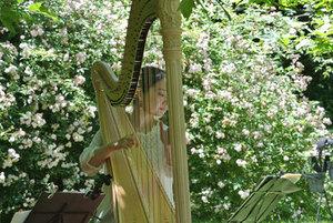 0616_harp.jpgのサムネイル画像