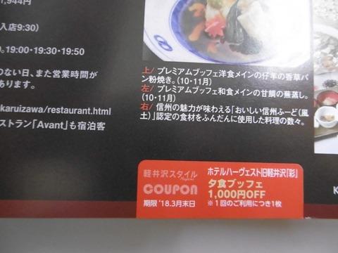 P1050036.jpg